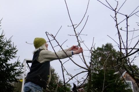 JM pruning